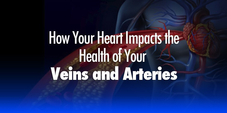 How Your Heart Health Impacts the Health of Your Veins & Arteries